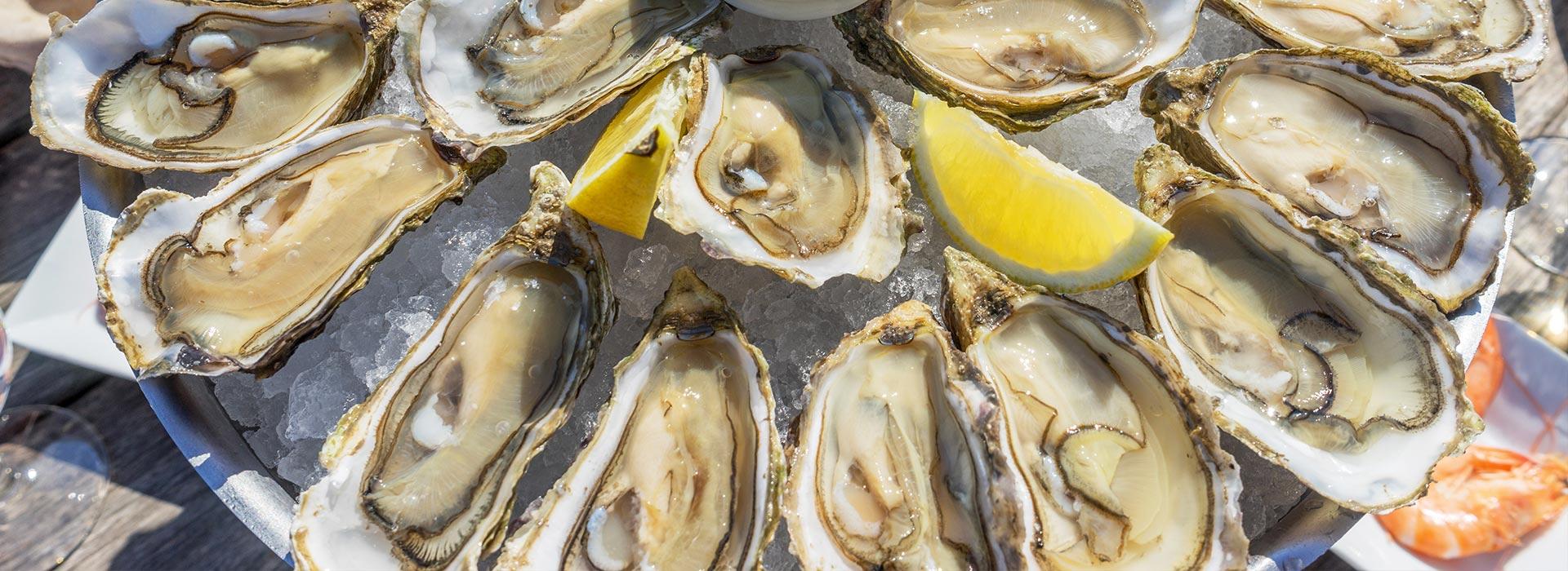 Fat Crabs Rib Company Corolla NC Restaurant